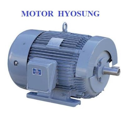 Picture of Motor HYOSUNG 37KW