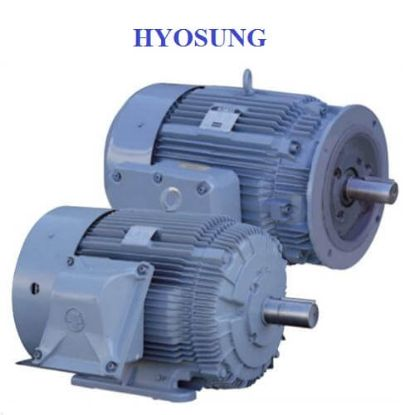 Picture of Động cơ Hyosung TEFC HMX2514282 55KW