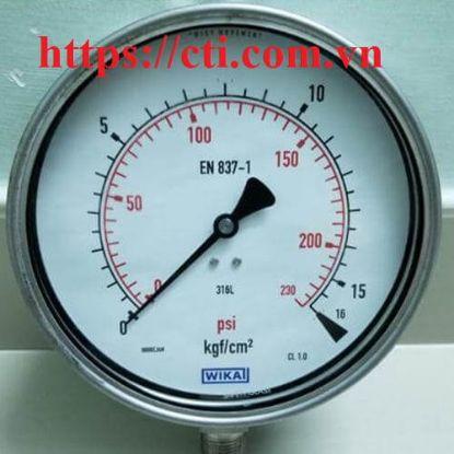 Picture of Đồng hồ đo áp suất WIKA 232.50.160 chân đứng 25bar