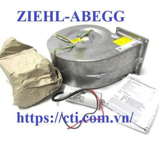 Picture of Quạt ZIEHL-ABEGG RH40M-4EK.4F.1R